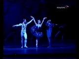 Swan lake III act: entrance of Odile - Anstasia Volochkova, Evgeny Ivanchenko