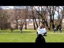 14 мая - фестиваль Сакура Мацури 2017 Ботанический сад Петра Великого, Санкт-Петербург, ул. Профессора Попова, д. 2