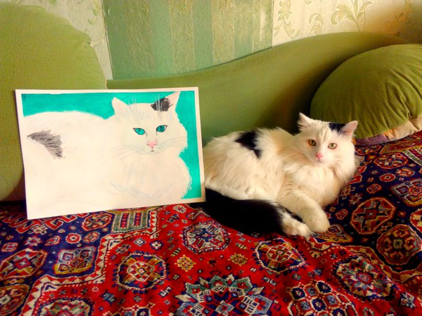 Кот Сильвестр