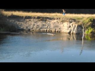 олімпійські прижки у воду