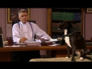 Судья Джон Дид/Judge John Deed/5 сезон 1 серия/Русские субтитры Landau76.