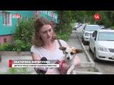 Фонд Умка - Новости на Восьмом канале от 23 08 16