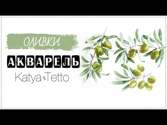 Акварель   Оливки ( Watercolor   Olives)