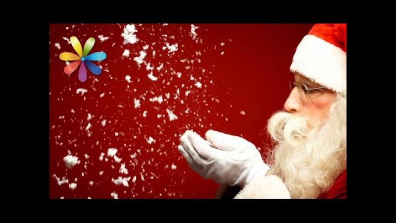 Фокусы, которыми вы удивите близких в новогоднюю ночь – Все буде добре. Выпуск 732...