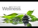 Презентация нашего клуба.Здоровый образ жизни вместе с Wellness.