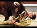 Бой с животными(Человек & Бык)(Коррида)