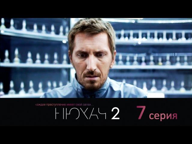 Нюхач 2. 7 серия