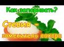 Семья Бровченко Как запаривать и использовать стевию заменитель сахара 03 17г
