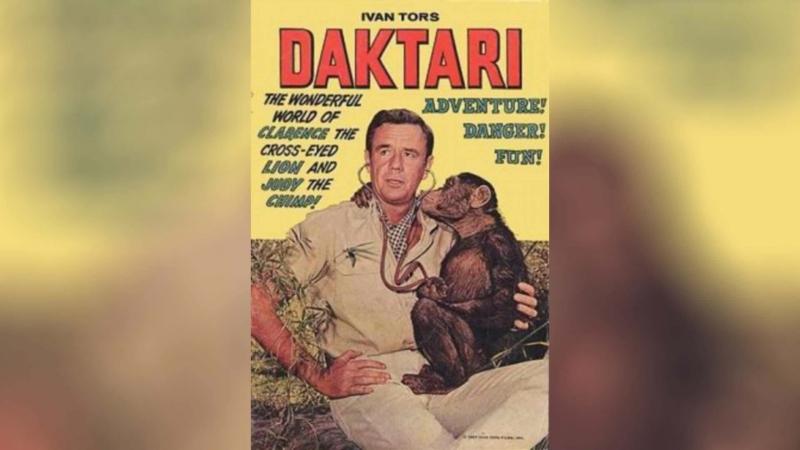 Дактари (1966
