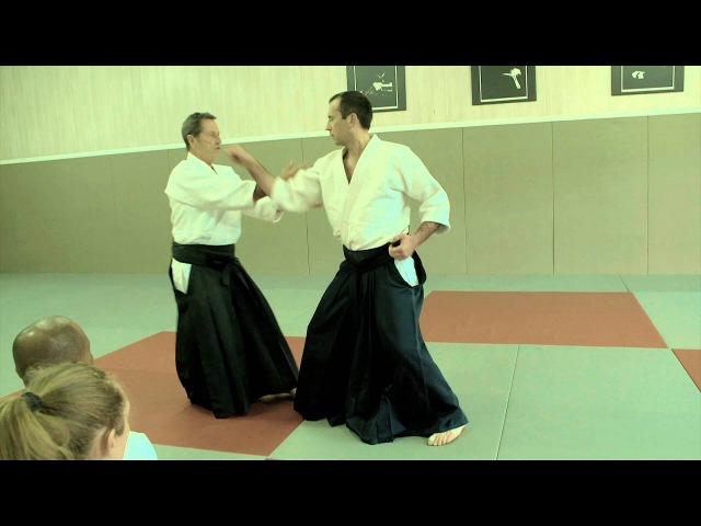 Aikido Jodan Tsuki 2 Christian Tissier