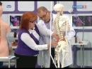 Радикулит - симптомы и причины, лечение. От чего болит спина? Диета при радикулите