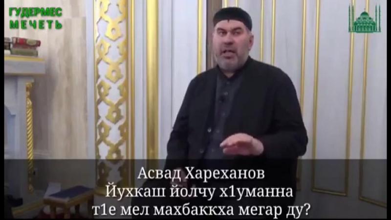 Асвад Хариханов - Юхкаш йолу хуман т1е мел мах баккха мегар ду?