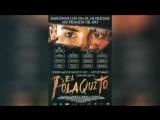Полячок (2003)   El Polaquito
