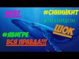 вся правда про синего кита / Синий кит»? #морекитов #тихийдом #разбудименяв420 #f57 #f58