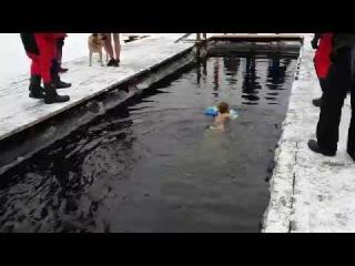ВИТЯ ЕФИМОВ 3 лет плывет 25 м в проруби в Санкт Петербурге 12 11 2016