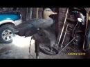 Механический чучела утки с вращающимися крыльями своими руками.