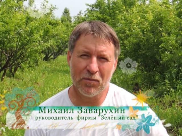 Зеленый сад фильм № 208 от 02.07.2016г. г.Хабаровск (zeleniisad.ru)