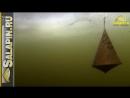 Реакция рыбы на докорм кормушкой и шарами подводное видео, зимняя рыбалка