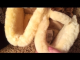 НОВЫЕ зимние Мокасины ugg ALENA!!!  Полностью натуральные! замша +овчина , размер 36, можно и на 35 ( 23 см)