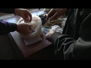 Открытие Китая с Евгением Колесовым по воскресеньям в 12:20 на Первом канале! Китайская медицина - узнай как прожить до 100 лет!