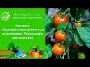 Семинар 14. Выращивание томатов по агротехнике Природного земледелия