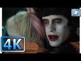 Ending Scene  Joker Saves Harley Quinn  Suicide Squad (2016)  4K ULTRA HD