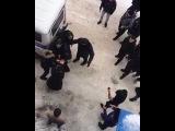 Даги ломают полицейских