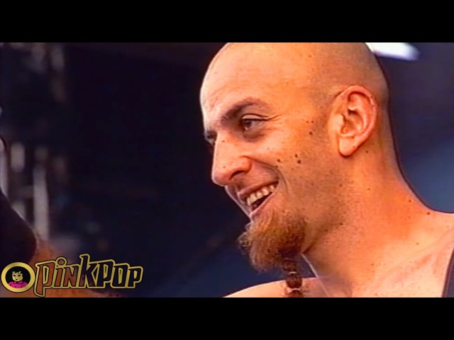 System Of A Down - Suggestions live 【PinkPop | 60fpsᴴᴰ】