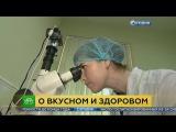 В России приступили к разработке аналога советских ГОСТов для продуктов