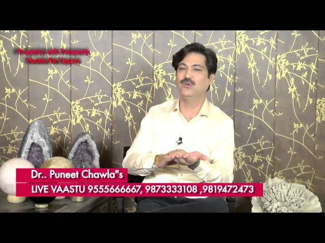 How Raksha Peeli Sarso Safeguard from all Losses Evil Eye? Vastu Remedy