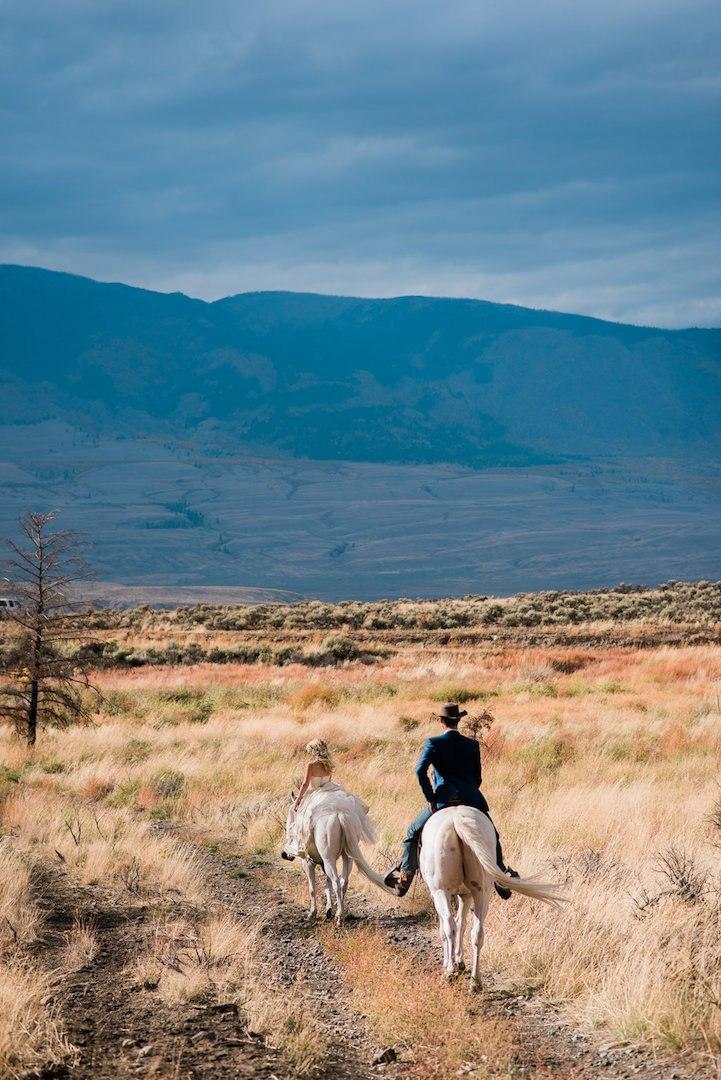 Украшение альбома молодоженов - свадебная фотосессия с лошадьми (10 фото). Конная прогулка молодоженов. Свадебная фотосессия в конюшне.