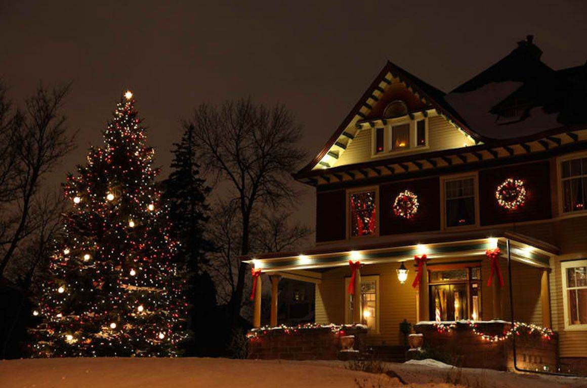 toluca lake christmas trees - 1024×682