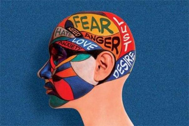 Нейромаркетинг: кто и зачем изучает мозг потребителей.  Зачем изучат