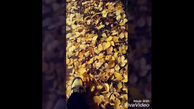 осень... 😱