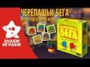 Настольная игра Черепашьи бега. Обзор детской развивающей игры от Знаем Играем