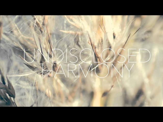 Sebastian Boldt - Undisclosed Harmony