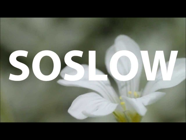 Sebastian Boldt feat. Emka - Soslow