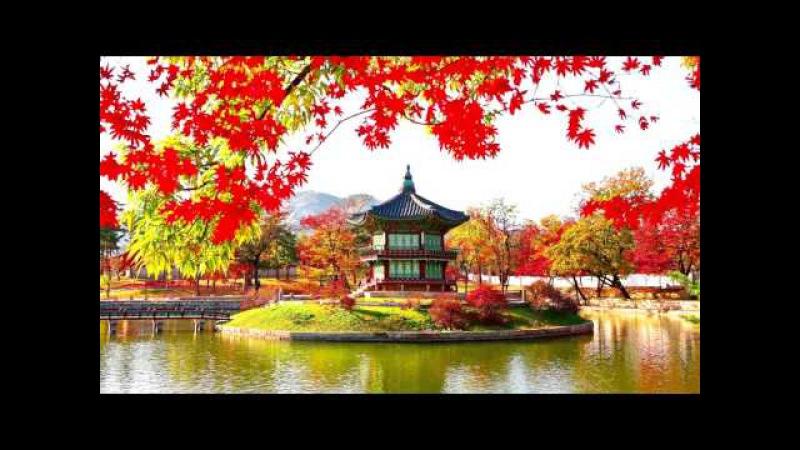 Китайская удивительная релакс музыка для комфорта и очищения пространства дома...