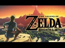 Legend of Zelda Donkey Breath
