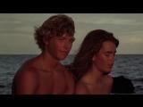 Голубая лагуна / The Blue Lagoon (1980) (мелодрама, приключения)