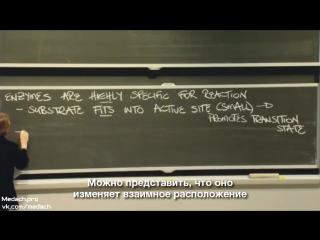 MIT Lecture Биохимические реакции, энзимы, АТФ