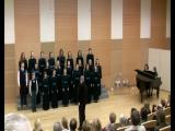 Образцовый детский коллектив детская хоровая студия