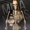 • MMA VINES | UFC GIF  18+