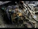 ШОКИРУЮЩИЕ НАХОДКИ ВОВ НАШЛИ ЧЕРНЫЕ КОПАТЕЛИ И ПОИСКОВЫЕ ОТРЯДЫ. N 20 / WWII Metal Detecting