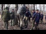 Каскад Весна 2017 День 2 bravekid.ru