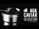 AGA CAVIAR GELIFICATION