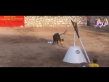 Most Awesome BullFighting Festival #6 ? Best funny videos try not to laugh ? Funny Pranks 2017