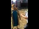 Алматы кудалык