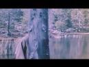 Тёмный лес  Villmark (2003)
