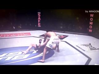 MMA Vine #75( by ARAGON )-Anthony Pettis vs Joe Lauzon